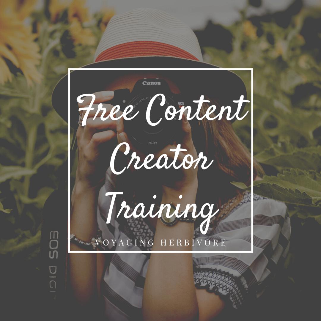Free 1 Hour Content Creator Training
